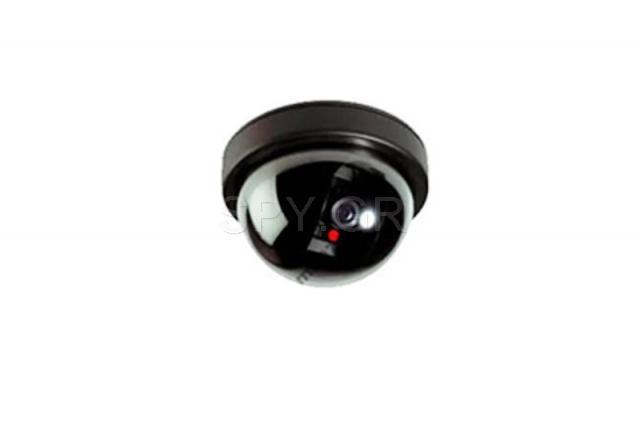 Ψεύτικη κάμερα οροφής